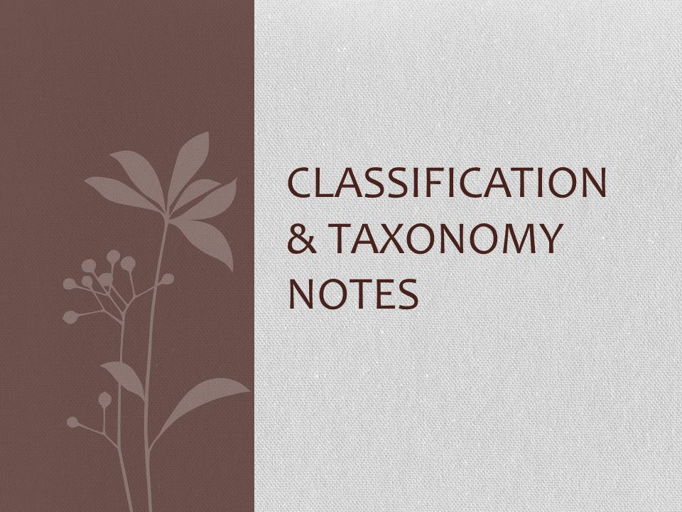 Classification & Taxonomy Notes