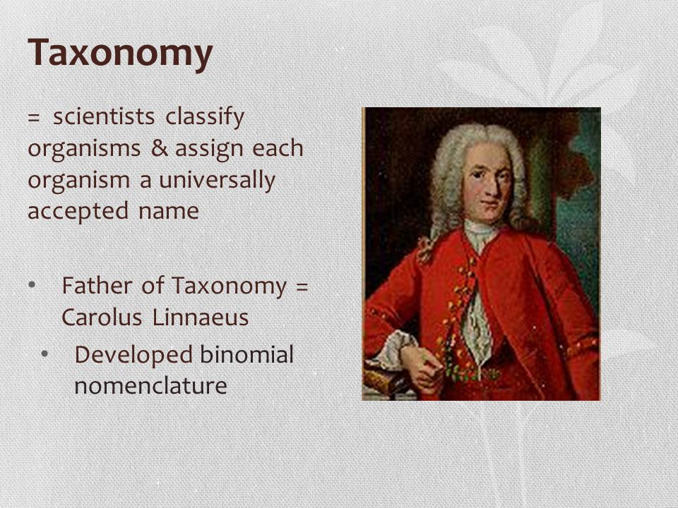 Taxonomy = scientists classify organisms & assign each organism a universally accepted name. Father of Taxonomy = Carolus Linnaeus.