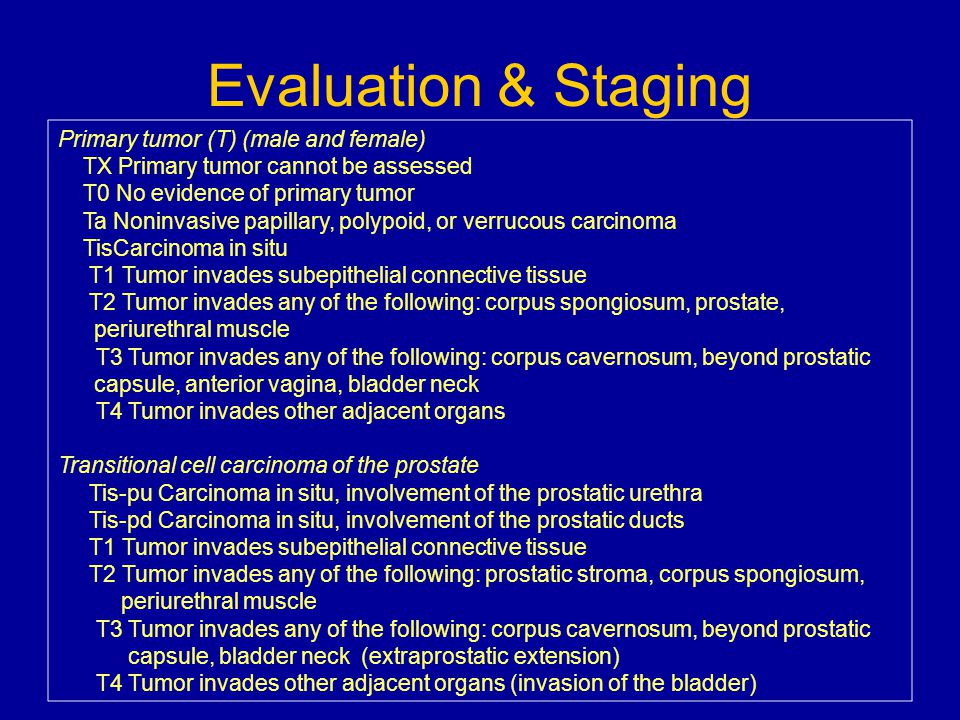 Evaluation & Staging Primary tumor (T) (male and female)