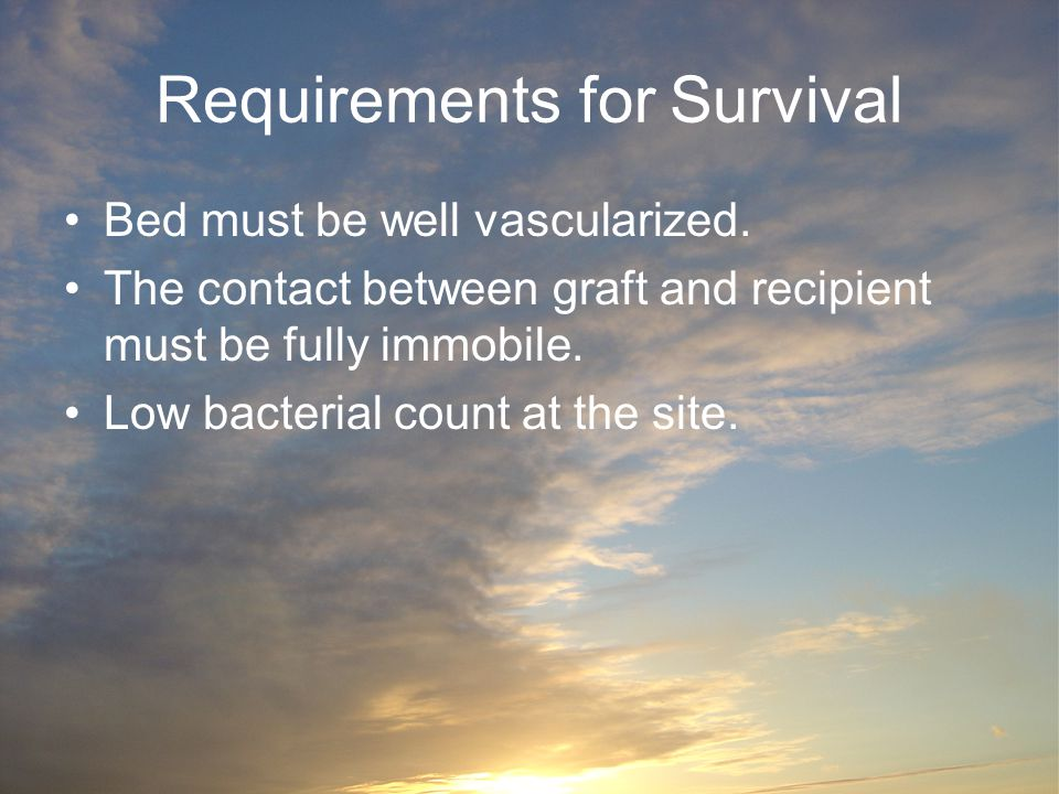 Requirements for Survival