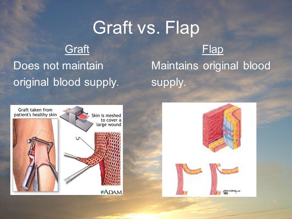 Graft vs. Flap Graft Does not maintain original blood supply. Flap