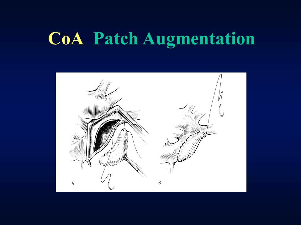 CoA Patch Augmentation