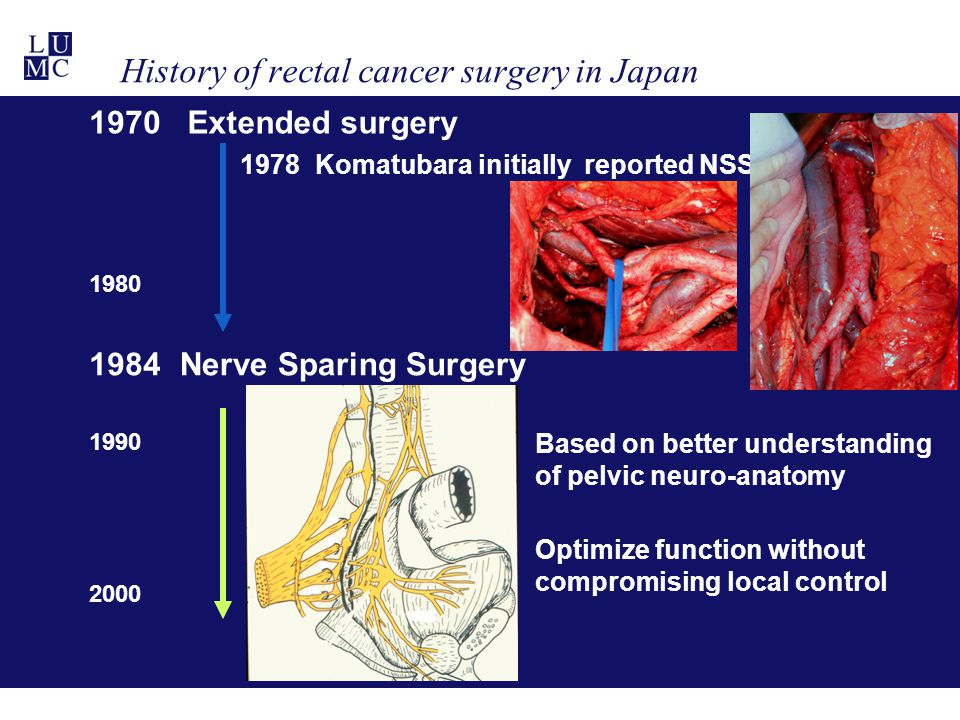 History of rectal cancer surgery in Japan