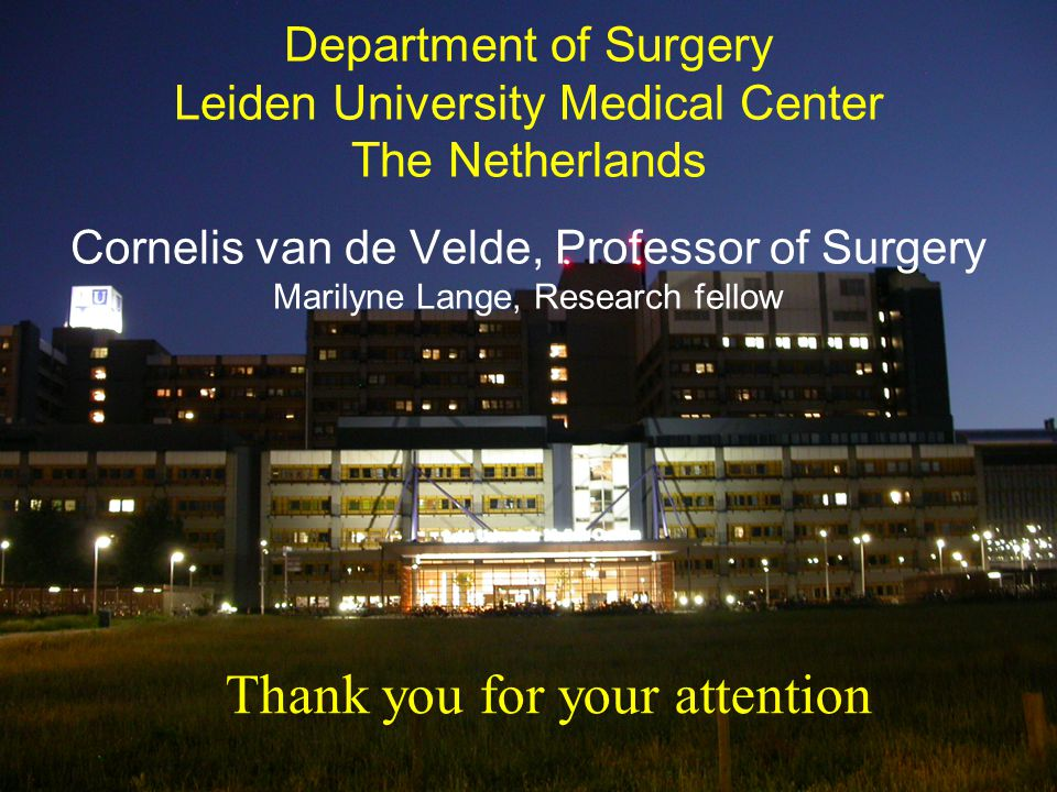 Department of Surgery Leiden University Medical Center The Netherlands