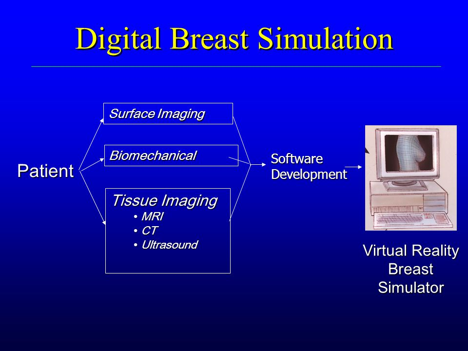 Digital Breast Simulation