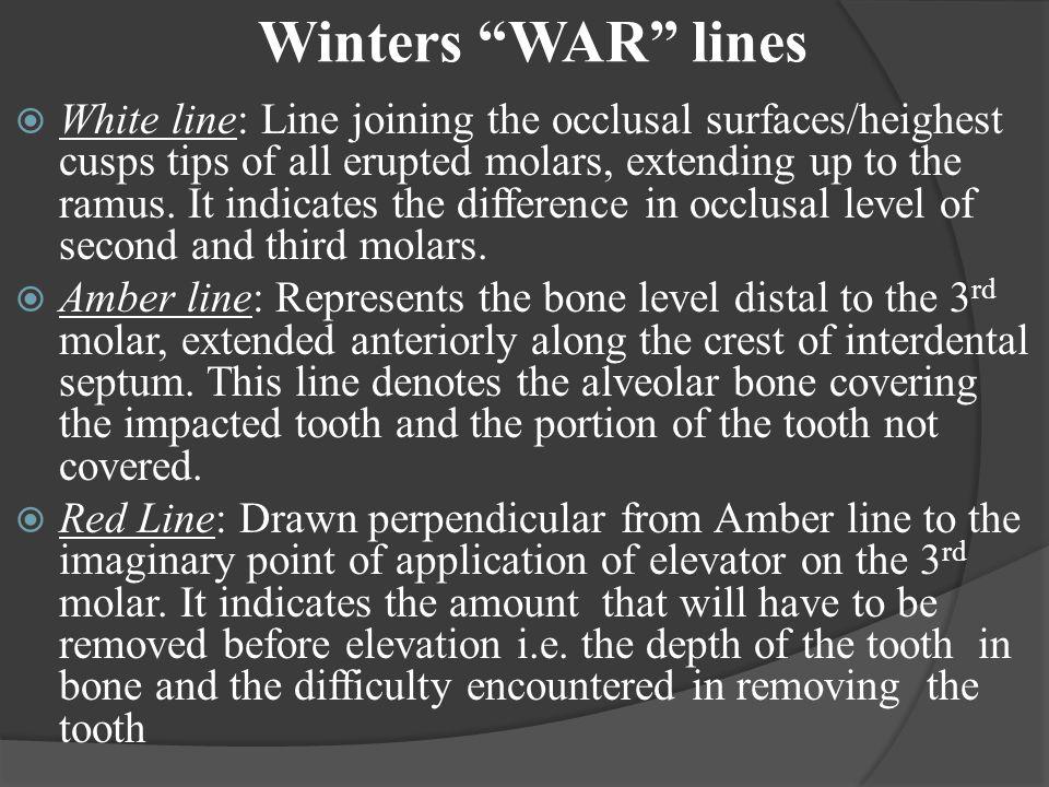 Winters WAR lines