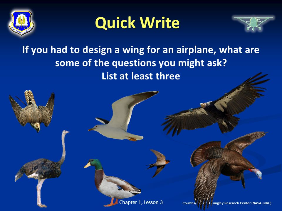 Quick Write If you had to design a wing for an airplane, what are some of the questions you might ask List at least three