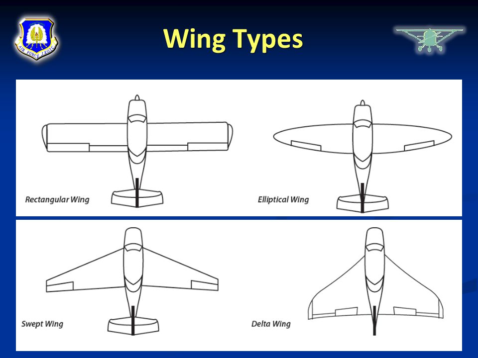 Wing Types Chapter 1, Lesson 3