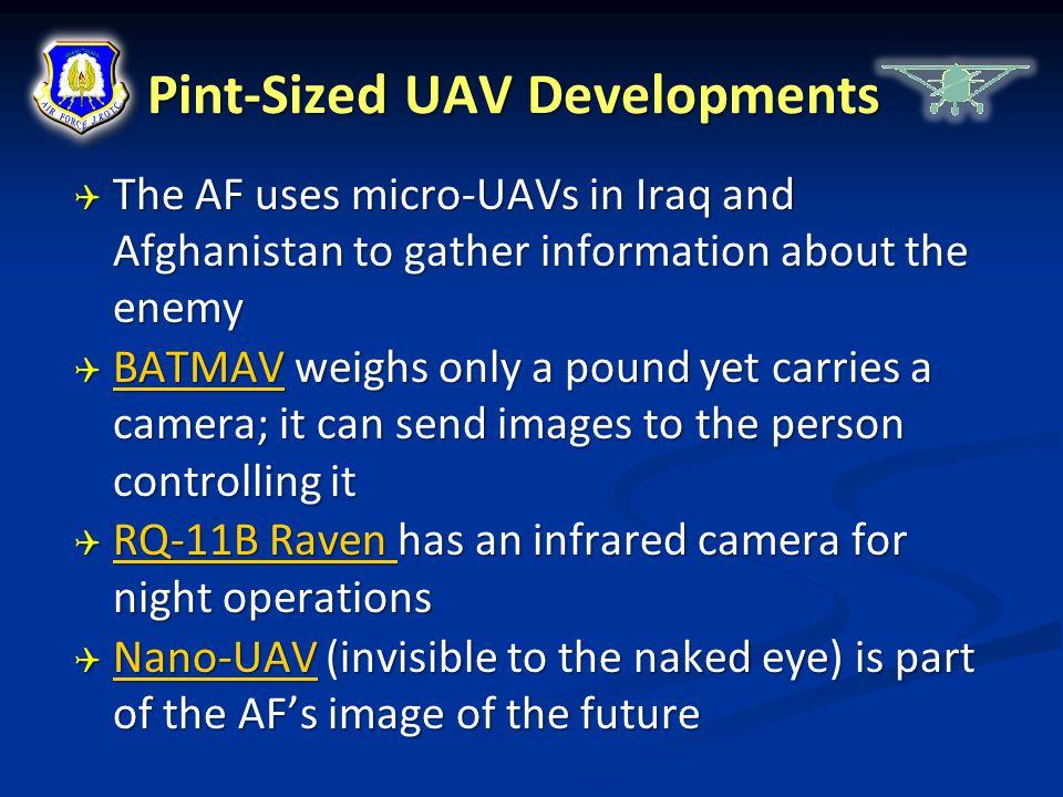 Pint-Sized UAV Developments
