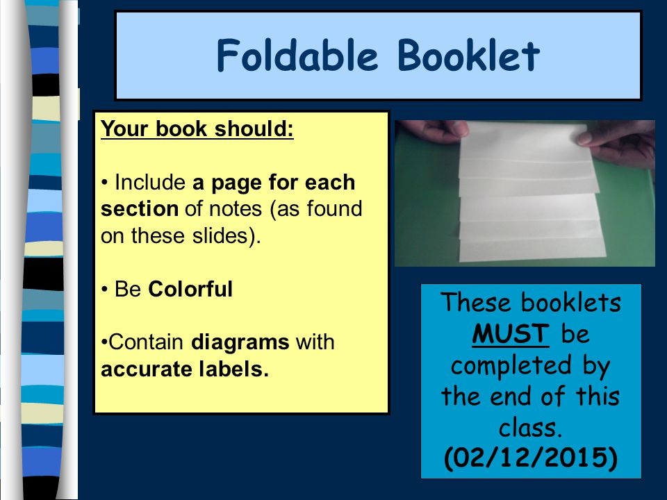 Foldable Booklet Your book should: Include a page for each section of notes (as found on these slides).