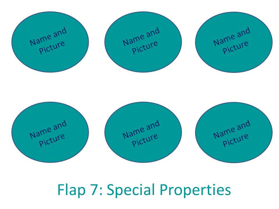 Flap 7: Special Properties