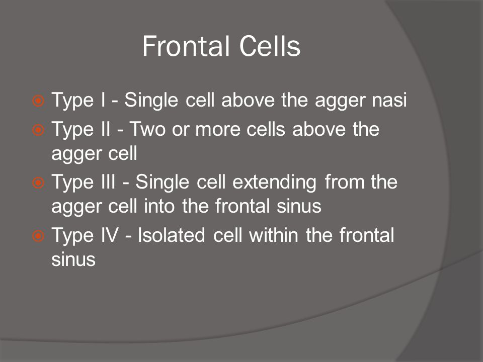 Frontal Cells Type I - Single cell above the agger nasi
