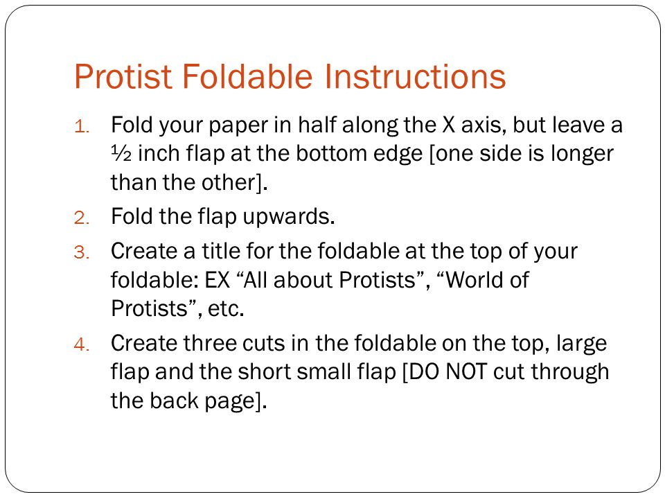 Protist Foldable Instructions