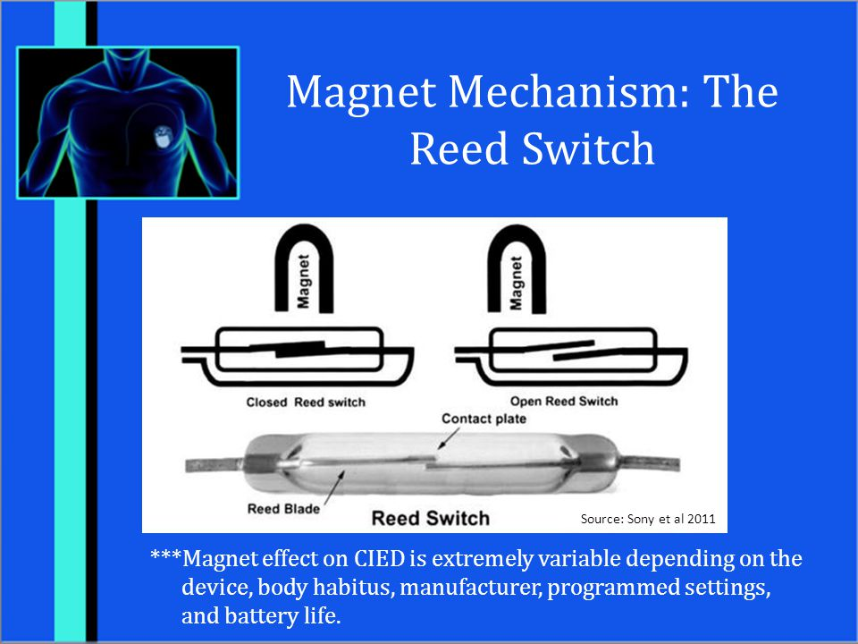 Magnet Mechanism: The Reed Switch