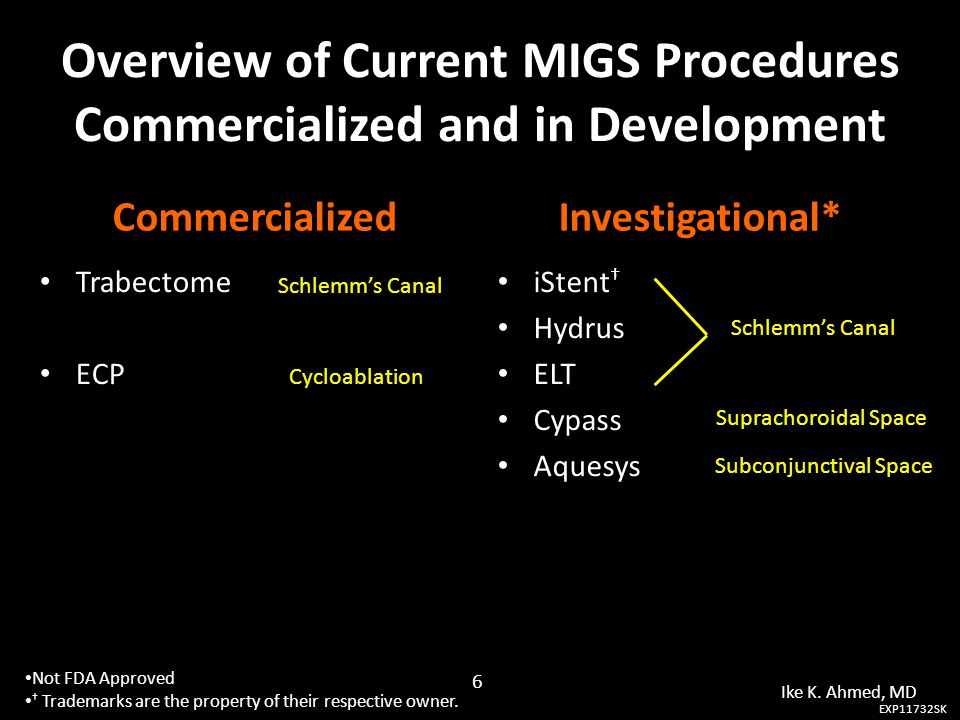 Overview of Current MIGS Procedures Commercialized and in Development