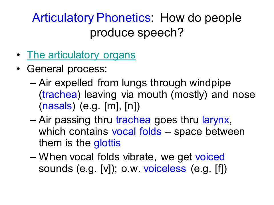 Articulatory Phonetics: How do people produce speech