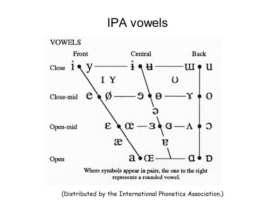 IPA vowels (Distributed by the International Phonetics Association.)