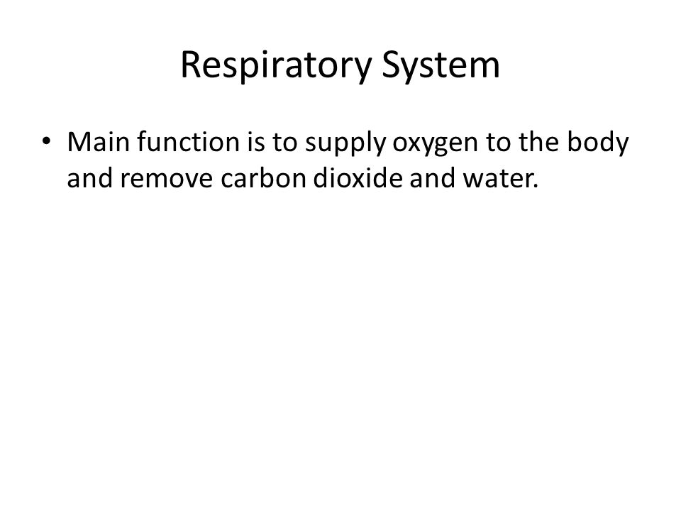Carbon Dioxide Removal Systems : Respiratory system ppt download