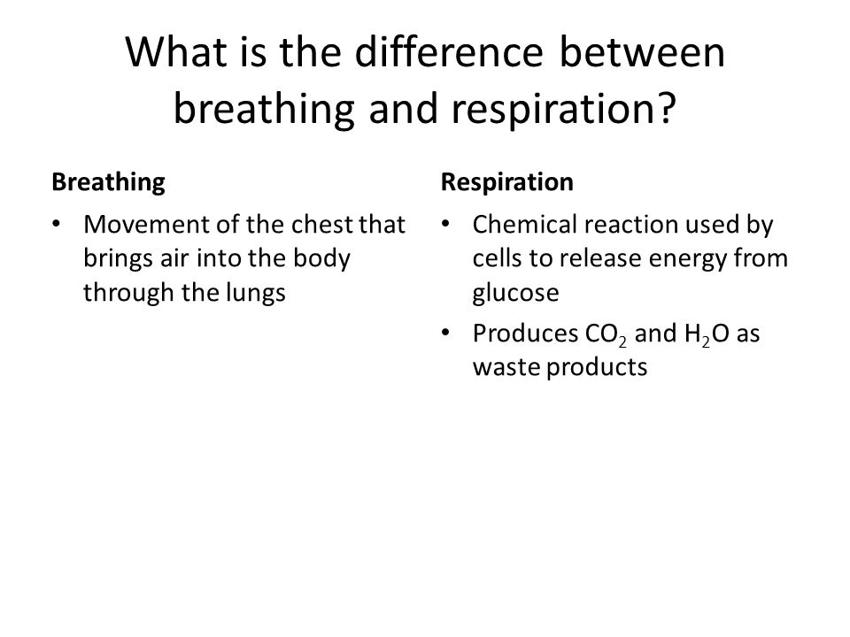 What is the difference between breathing and respiration