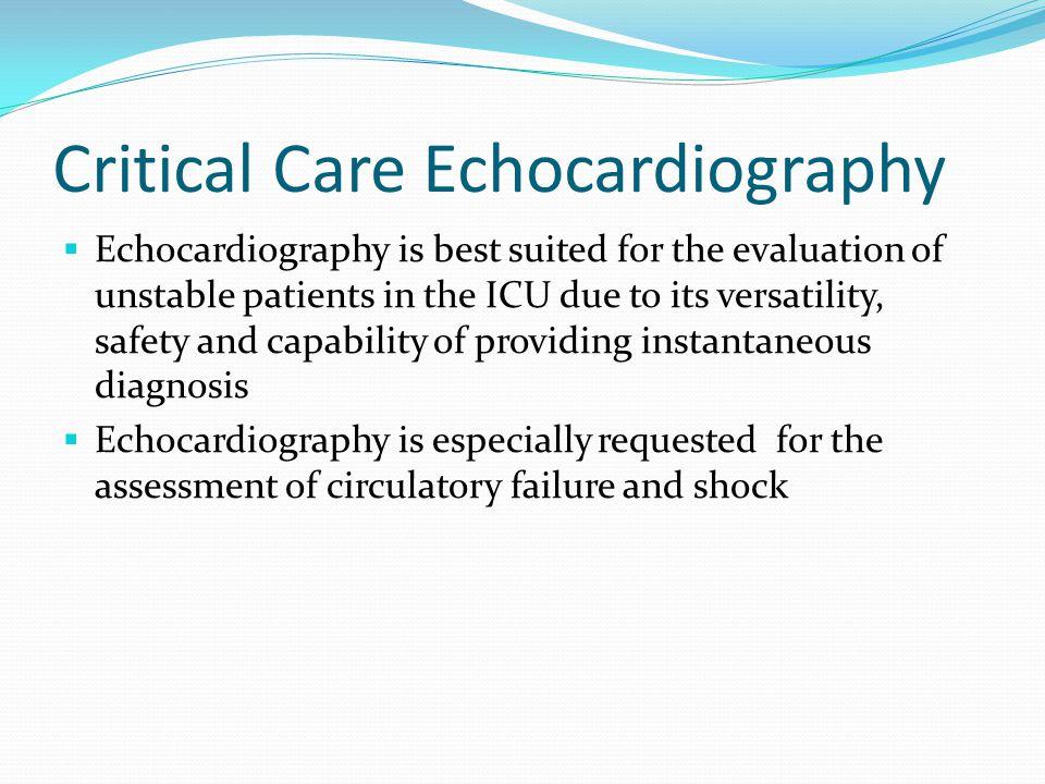 Critical Care Echocardiography