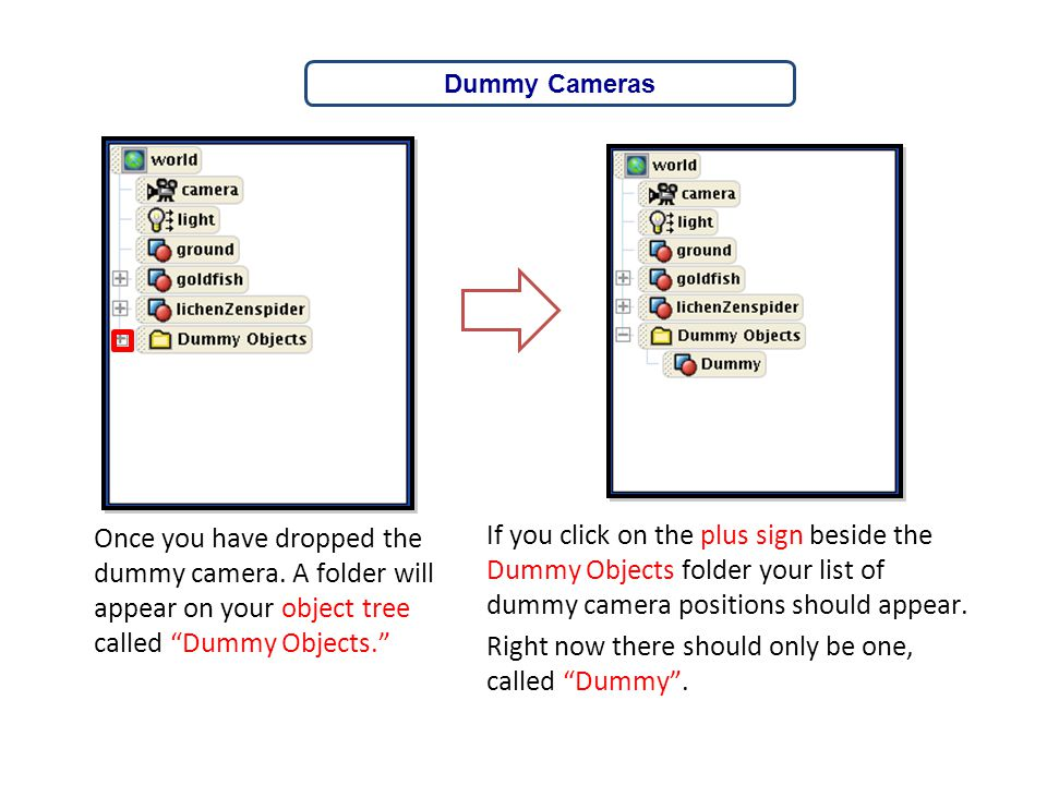 Dummy Cameras Once you have dropped the dummy camera. A folder will appear on your object tree called Dummy Objects.