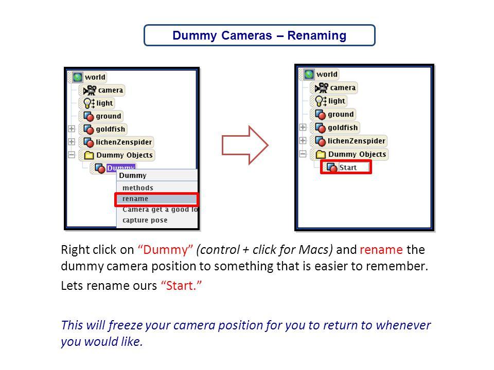 Dummy Cameras – Renaming