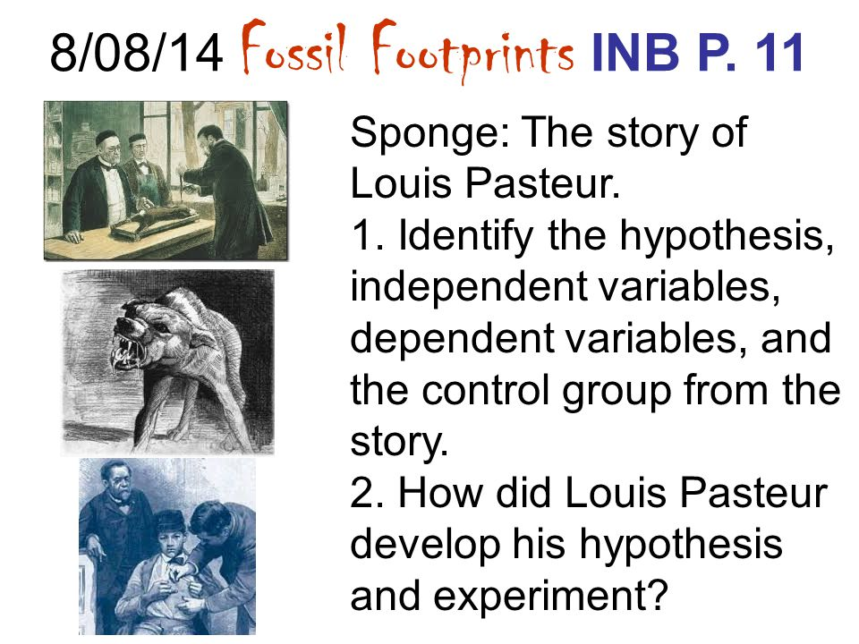8/08/14 Fossil Footprints INB P. 11