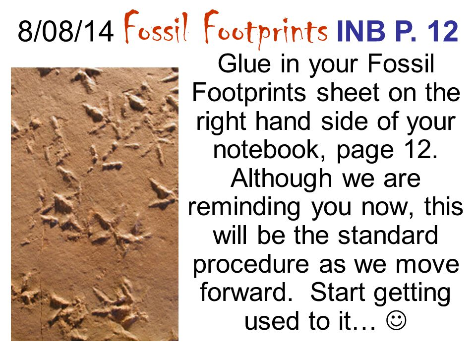 8/08/14 Fossil Footprints INB P. 12