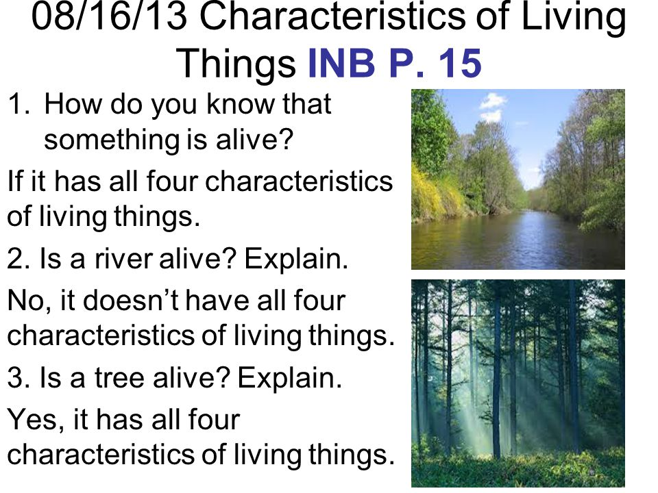08/16/13 Characteristics of Living Things INB P. 15