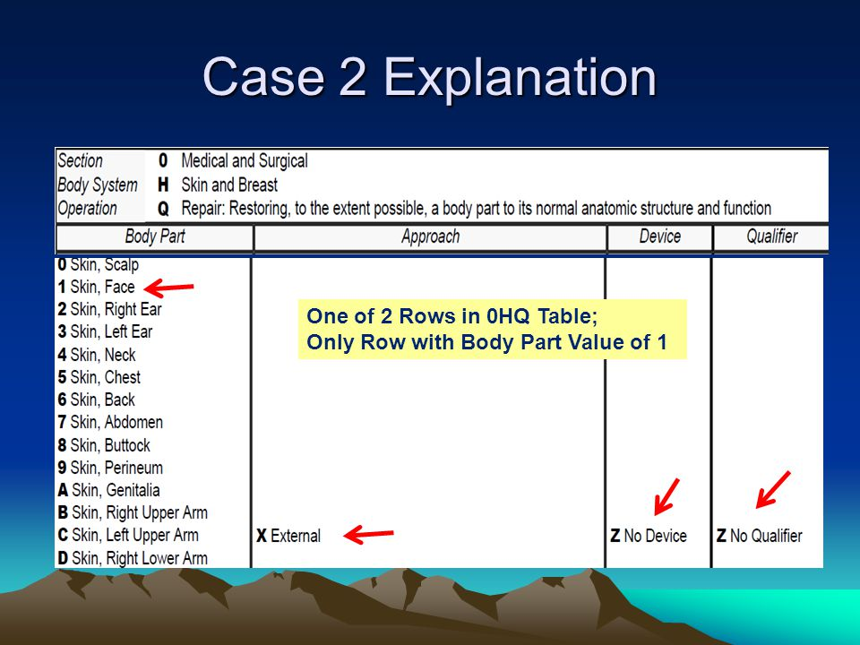 Case 2 Explanation One of 2 Rows in 0HQ Table;