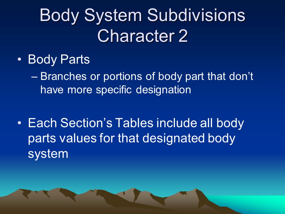 Body System Subdivisions Character 2