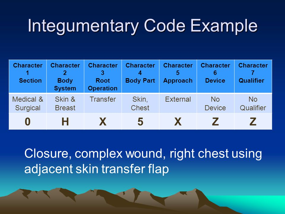 Integumentary Code Example