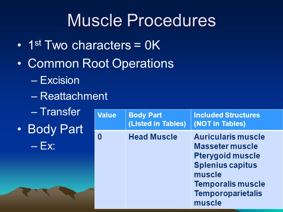 Muscle Procedures 1st Two characters = 0K Common Root Operations