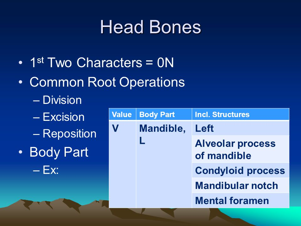 Head Bones 1st Two Characters = 0N Common Root Operations Body Part