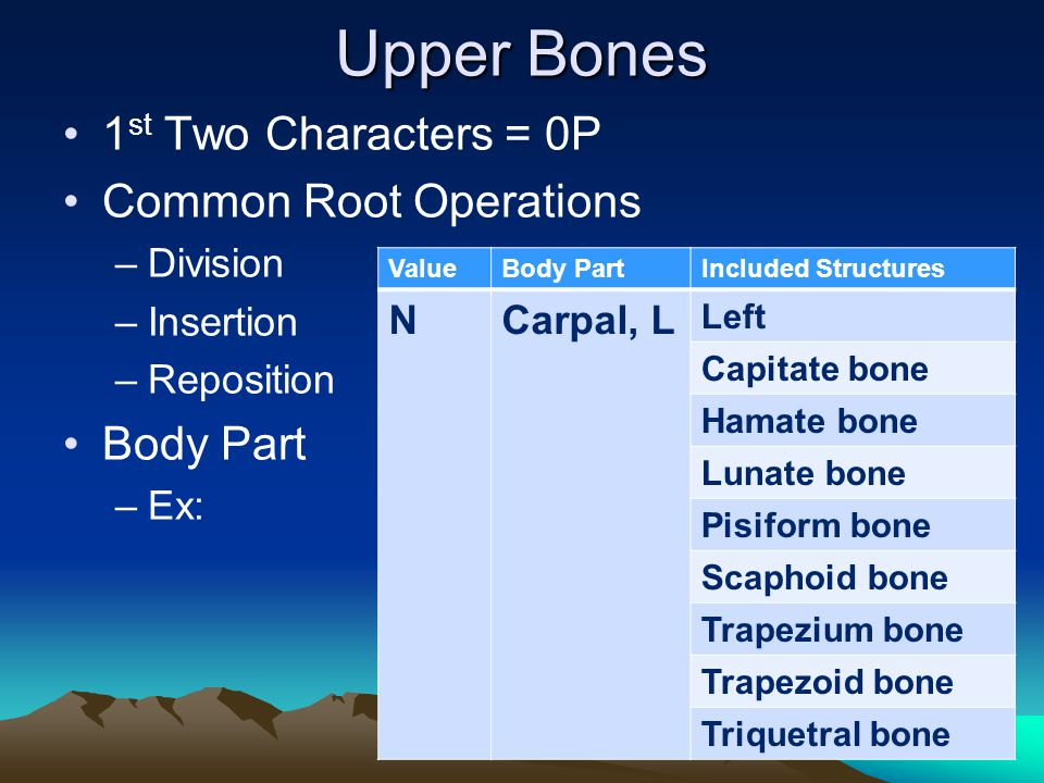 Upper Bones 1st Two Characters = 0P Common Root Operations Body Part