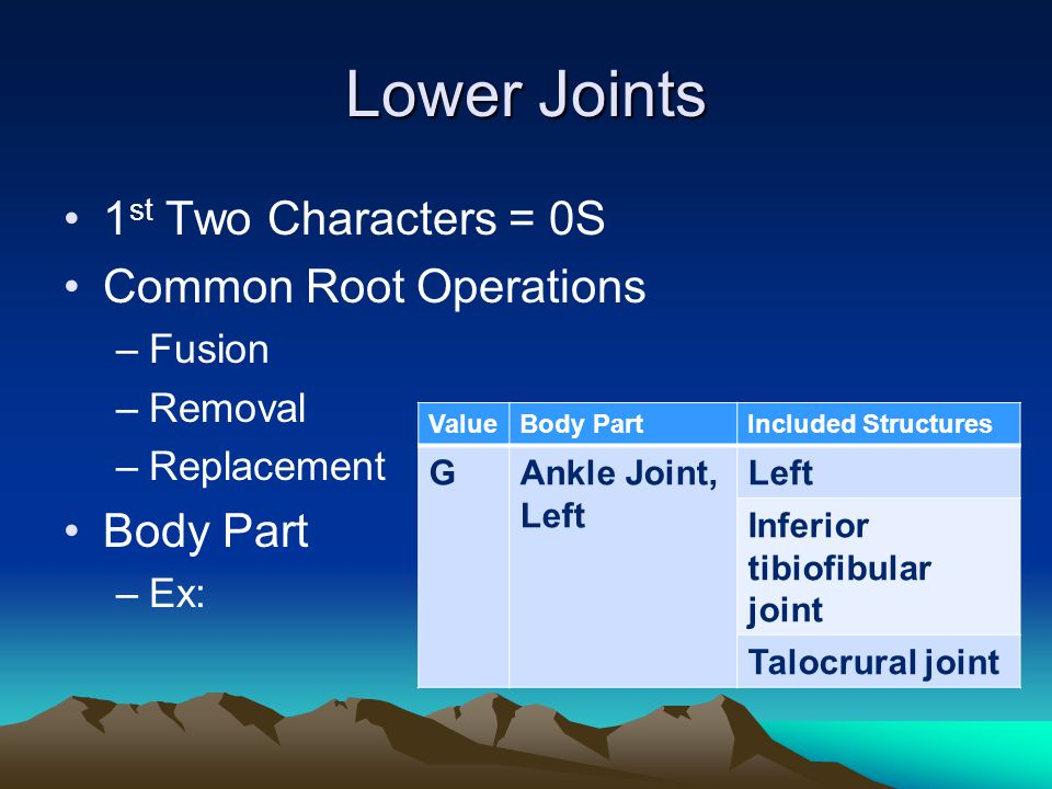 Lower Joints 1st Two Characters = 0S Common Root Operations Body Part