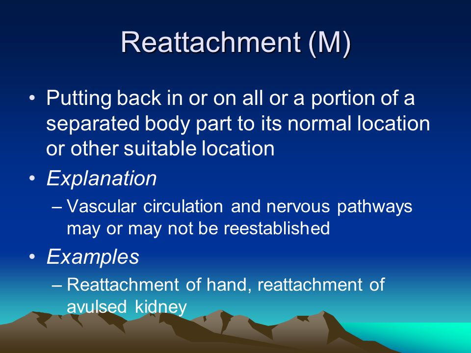 Reattachment (M) Putting back in or on all or a portion of a separated body part to its normal location or other suitable location.