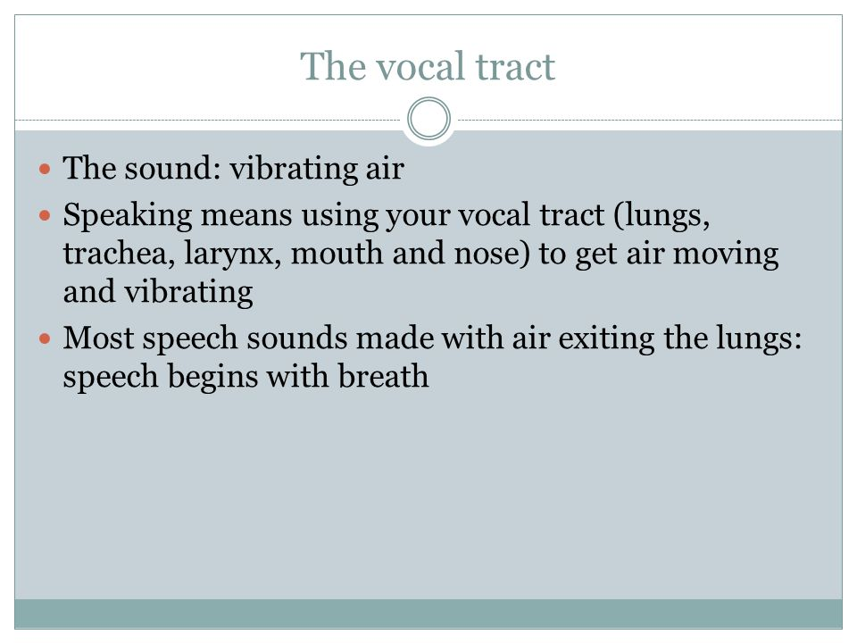 The vocal tract The sound: vibrating air