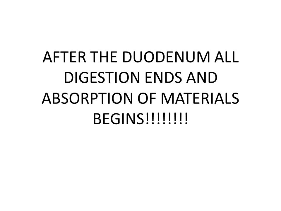 AFTER THE DUODENUM ALL DIGESTION ENDS AND ABSORPTION OF MATERIALS BEGINS!!!!!!!!