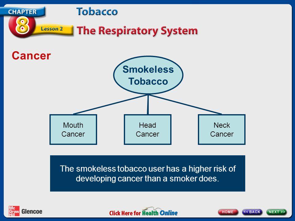 Cancer Smokeless Tobacco