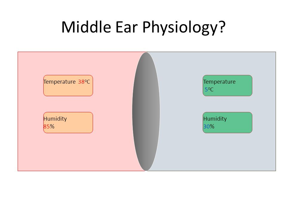 Middle Ear Physiology Temperature 38oC Temperature 5oC Humidity 85%