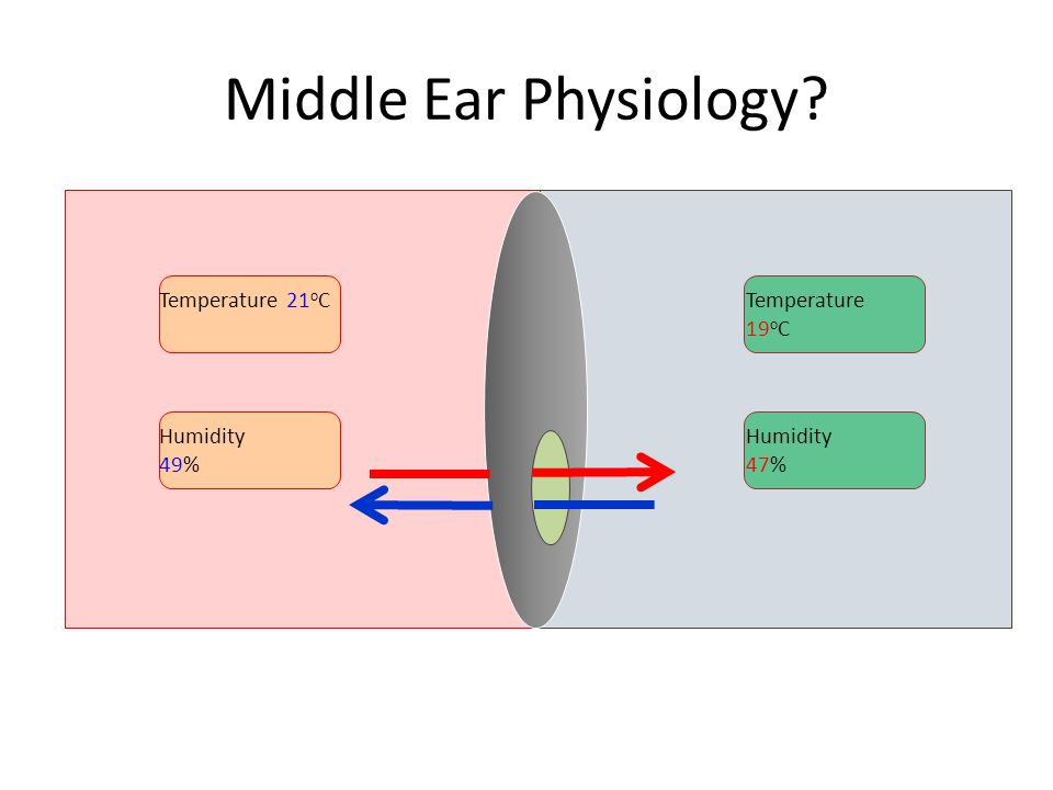 Middle Ear Physiology Temperature 21oC Temperature 19oC Humidity 49%