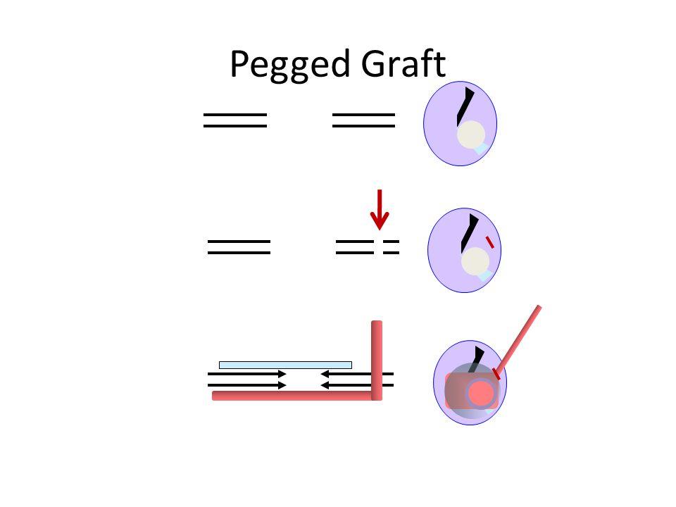 Pegged Graft