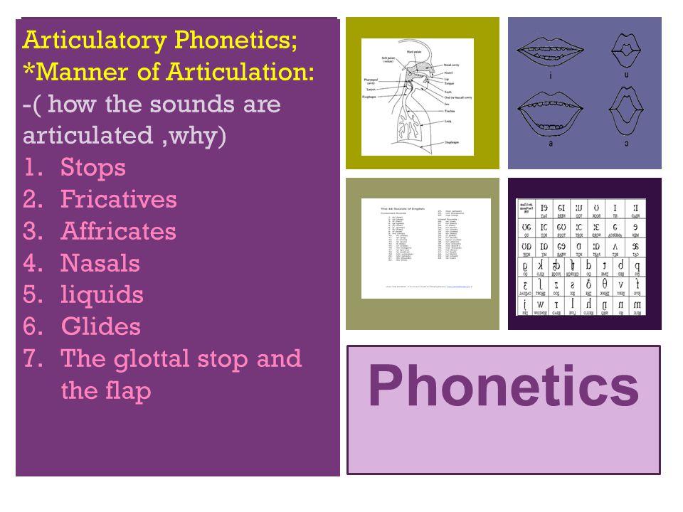 Phonetics Articulatory Phonetics; *Manner of Articulation: