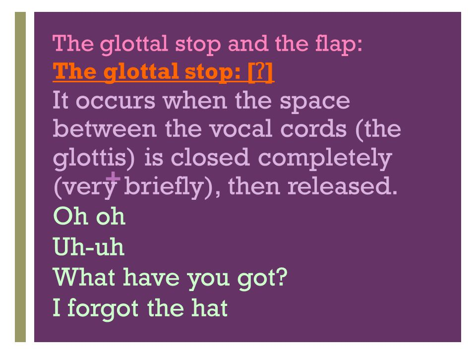 The glottal stop and the flap: