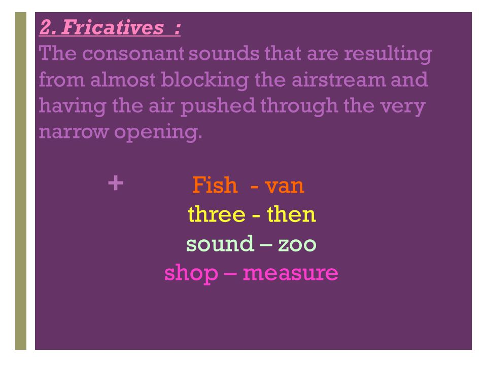 Fish - van three - then sound – zoo shop – measure 2. Fricatives :
