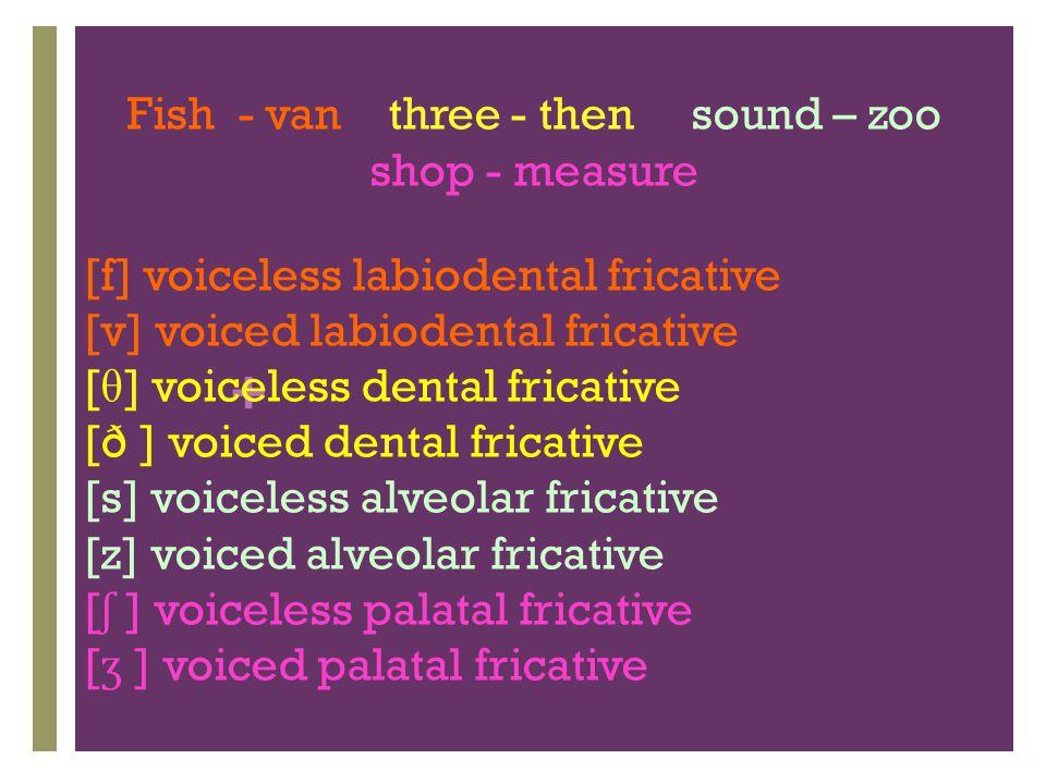 Fish - van three - then sound – zoo shop - measure