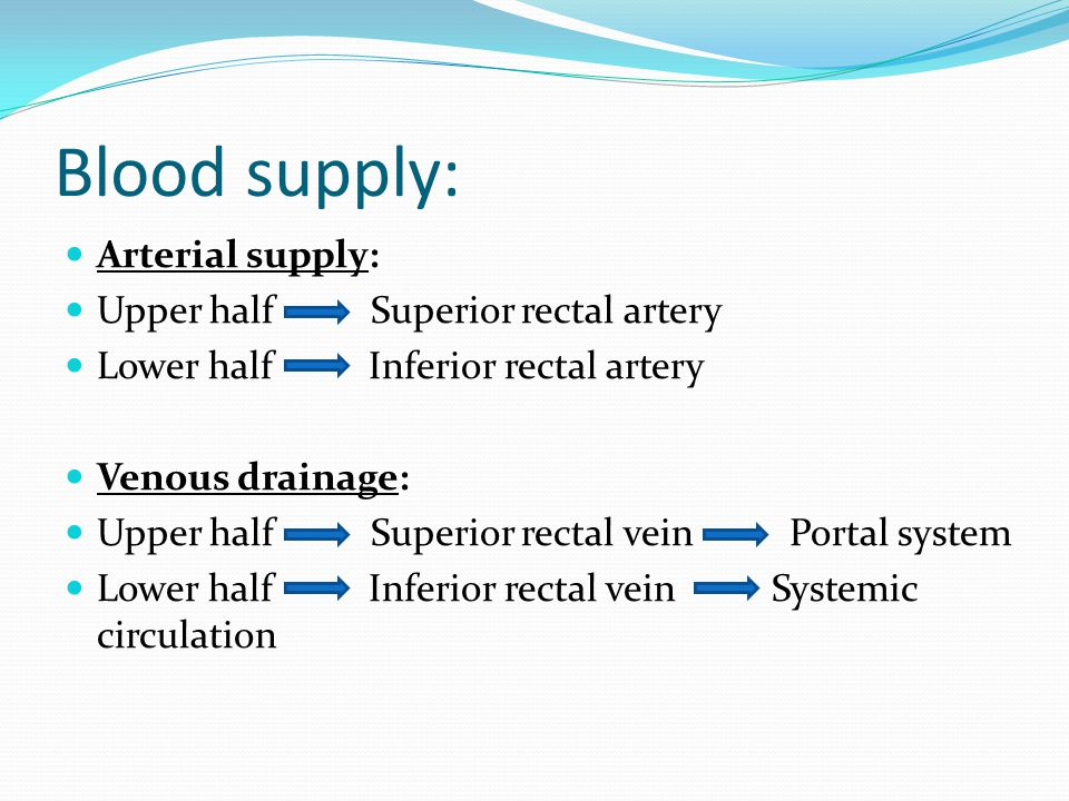 Blood supply: Arterial supply: Upper half Superior rectal artery