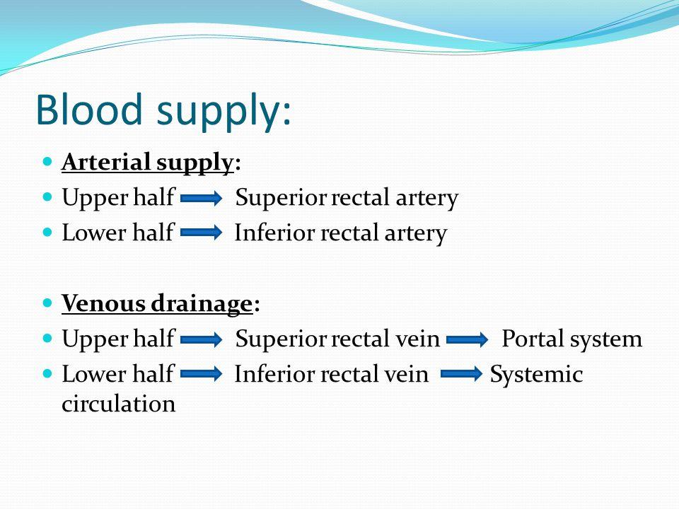Blood supply: Arterial supply: Upper half Superior rectal artery