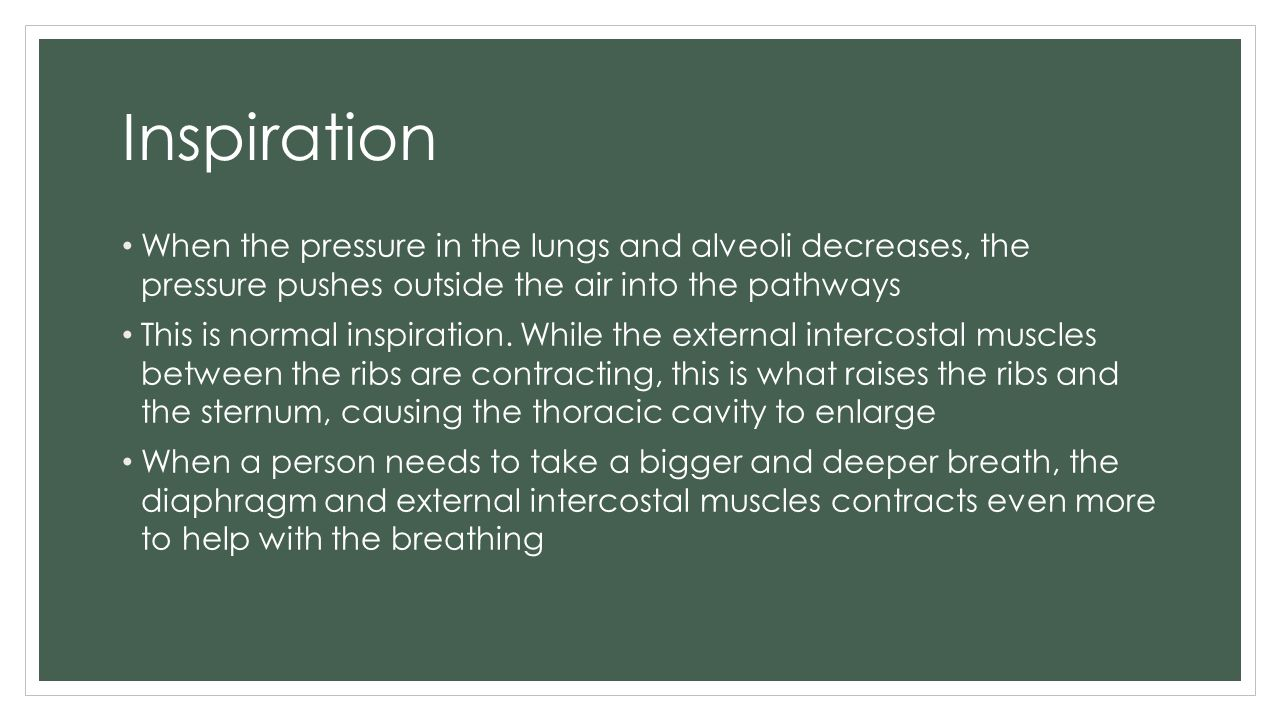 Inspiration When the pressure in the lungs and alveoli decreases, the pressure pushes outside the air into the pathways.